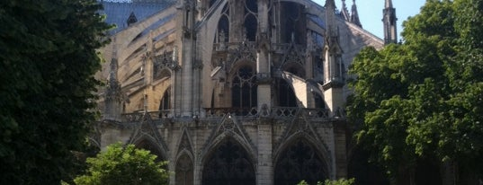 L'Ombre de Notre-Dame is one of Paris: husband's hometown ♥.