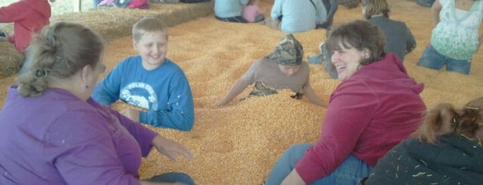 Sever's Corn Maze & Fall Festival is one of Fun with Kids in Twin Cities.