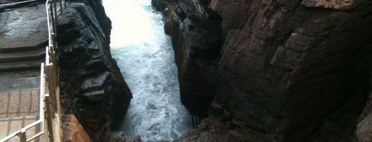 Thunder Hole is one of Acadia.