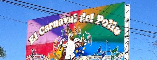 El Carnaval del Pollo is one of Tempat yang Disukai Andree.