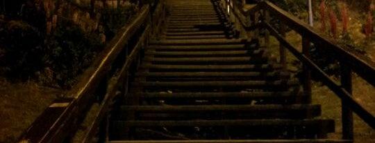 Escalera de San Martín y Belgrano is one of Patagonia (AR).