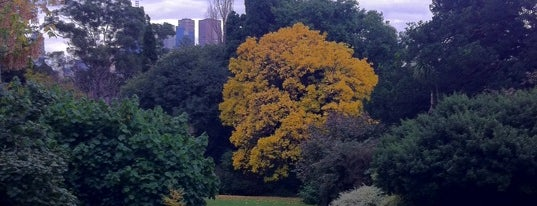 Royal Botanic Gardens is one of The Best of South Yarra.