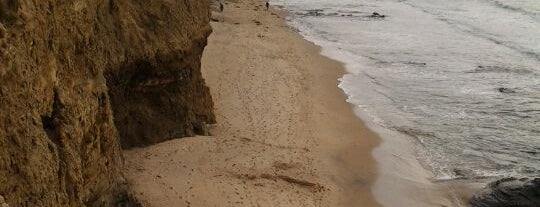 Sunset Cliffs Natural Park is one of Favorite Haunts Insane Diego.