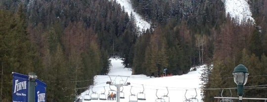 Fernie Alpine Resort is one of BC Ski Resorts.