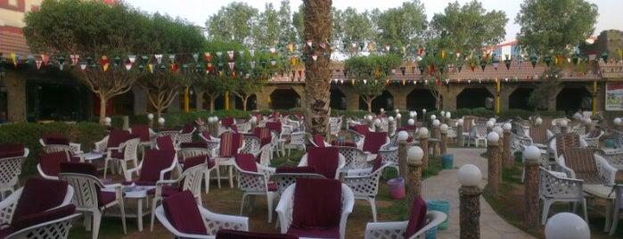 Alwan Hookah Bar is one of Locais curtidos por Ahmad.