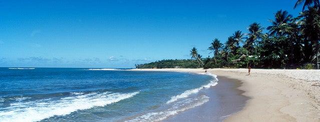 Praia de Itacimirim is one of Lieux qui ont plu à Victor.