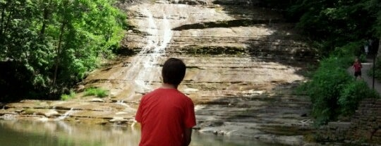 Buttermilk Falls is one of Fingerlakes Transport an Tour Service.