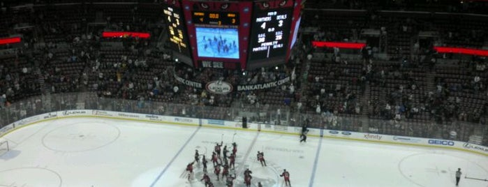 BB&T Center is one of NHL HOCKEY ARENAS.