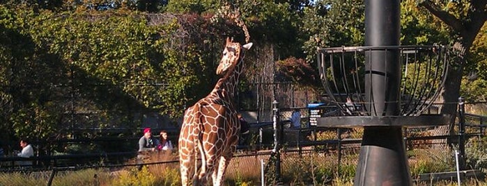 Como Park Zoo is one of Fun with Kids in Twin Cities.
