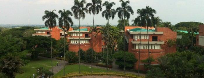 Universidad Autónoma de Occidente - Cali is one of Consultoría/Formación.