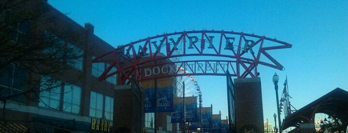 Navy Pier is one of Pet Friendly Destinations.