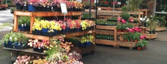 GardenWorks is one of Orte, die Christian gefallen.