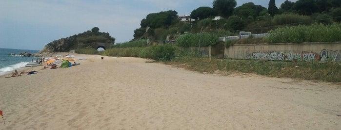 Platja de la Murtra is one of Les millors platges prop de Barcelona.