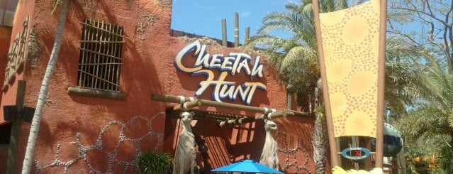 My favorites for Theme Parks and Rides