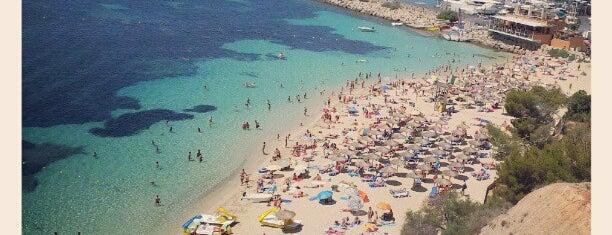 Platja de l'Oratori / Platja de Portals Nous is one of Palma De Mallorca.