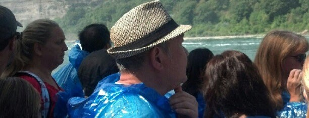 Maid of the Mist is one of Cool places in NY (upstate).