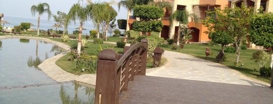 Mövenpick Resort El Sokhna is one of Orte, die Nika gefallen.