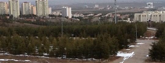 "Bilkent Üniversitesi is one of Kampüs Havasını ""Hisset""."