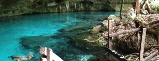 Cenote Dos Ojos is one of Tulum.