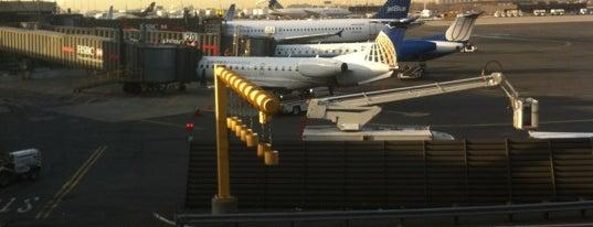 뉴어크 리버티 국제공항 (EWR) is one of USA Trip 2013 - New York.