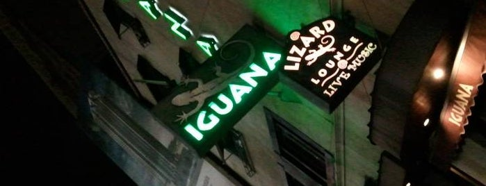 Iguana NYC is one of Places to go to by me.