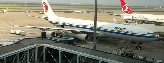 Shanghai Pudong International Airport (PVG) is one of AIRPORT.