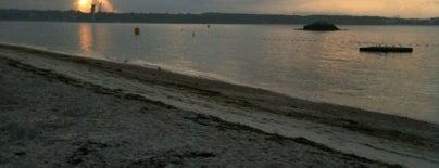 McCooks Beach & Park is one of Locais curtidos por Svetlana.