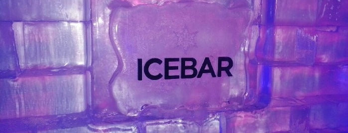 ICEBAR Orlando is one of CLUBS AND BARS.