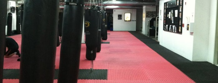 CKO Kickboxing is one of Tempat yang Disukai Yvette.