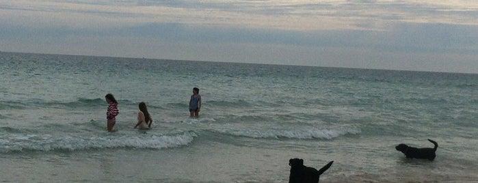 Fremantle Beach is one of สถานที่ที่บันทึกไว้ของ Syahirah.