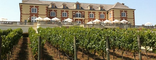 Domaine Carneros is one of My favoite places in USA.