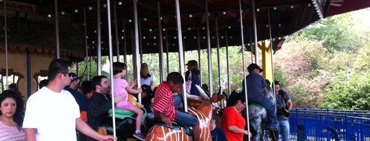 Houston Zoo is one of Al's Zoo, Jump, and Stuff.