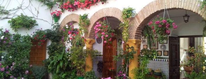 Casa-Patio de la calle Parras, 8 is one of Visita virtual a los Patios de cordoba.
