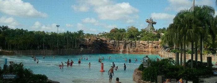 Disney's Typhoon Lagoon is one of Disney Sightseeing: Other Magic.