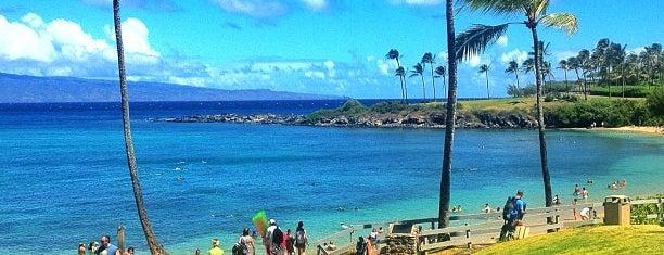Napili Beach is one of Hawaii 2014 LenTom.