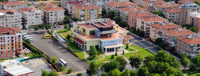 Yunus Emre Kültür ve Sanat Merkezi is one of Pendik.