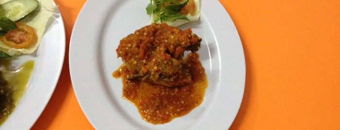 Bebek Bengal is one of DPS PMGN.