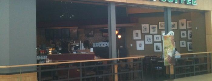 Starbucks is one of สถานที่ที่ Enrique ถูกใจ.