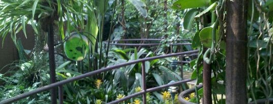 Garfield Park Conservatory is one of Friends Food.