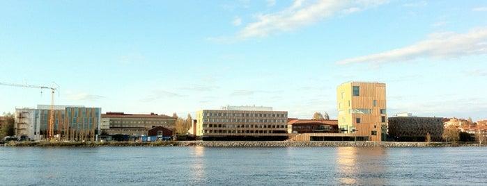 Ön is one of Umeå.