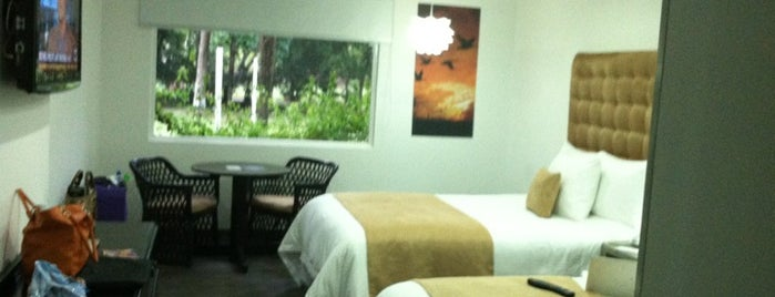 Riande Aeropuerto Hotel & Resort is one of Davidさんのお気に入りスポット.