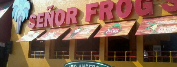 Señor Frog's is one of BAR.