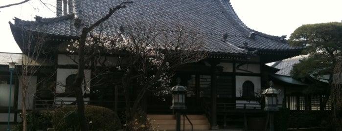 崇鎮山 無量寺 is one of せたがや百景 100 famous views of Setagaya.