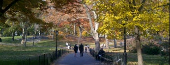 Central Park is one of Fun Places in NYC Metro-Area.