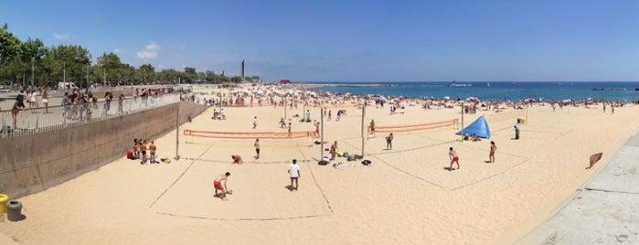 Praia da Nova Icària is one of Playas de Barcelona.
