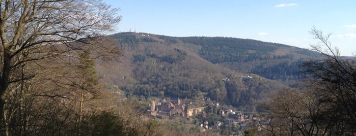 Heiliegenberg is one of Heidelberg!.