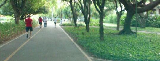 Parque da Jaqueira is one of Locais Favoritos em Recife.