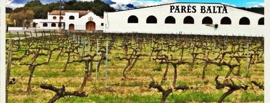 Parés Baltà Wines & Cava is one of Lugares favoritos de Egina.