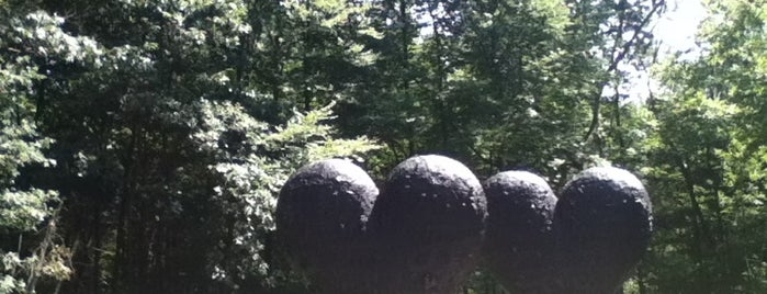 DeCordova Museum and Sculpture Park is one of 100 Museums to Visit Before You Die.