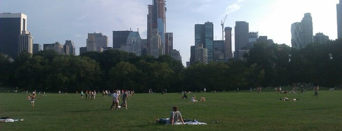 Central Park is one of New York City Tourists' Hits.
